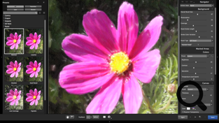Screenshot of the Alien Skin Photo Bundle showing the results of a preset applied to a purple flower
